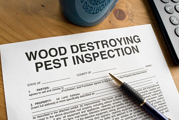 Pest Inspection Paperwork stock photo