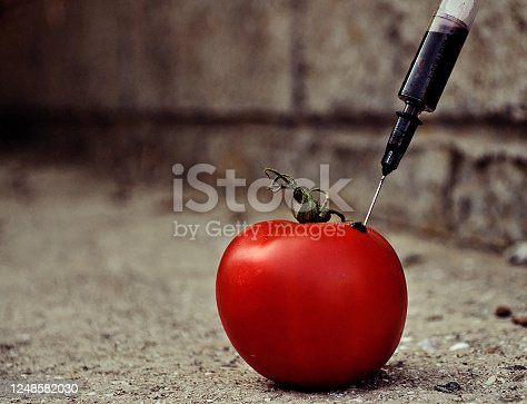 Pesticides and nitrates are injected into tomato with a syringe