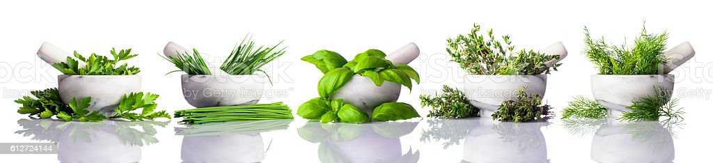Pestle and Mortar with Green Herbs on White Background stock photo