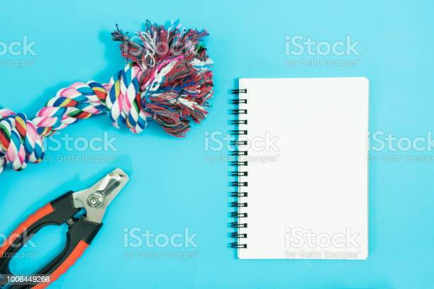 Pet accessories concept blank notebook with rope bowls and rubber toy picture id1006449266?b=1&k=6&m=1006449266&s=612x612&h=idxen99yqmyxcwkcaudw2dwbdi6naso60dj8w25ffms=