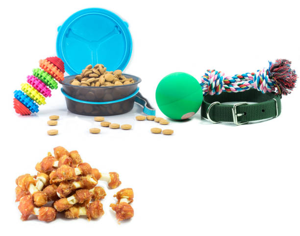 Pet accessories concept dry food collars and rubber toys for pet on picture id987319822?b=1&k=6&m=987319822&s=612x612&w=0&h=bswu2dwa7mwks2yjo96ogsld7rcufexhkecwessv9h8=