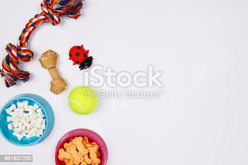 istock Pet accessories, food and toy on white background. Flat lay. Top view. 991837200