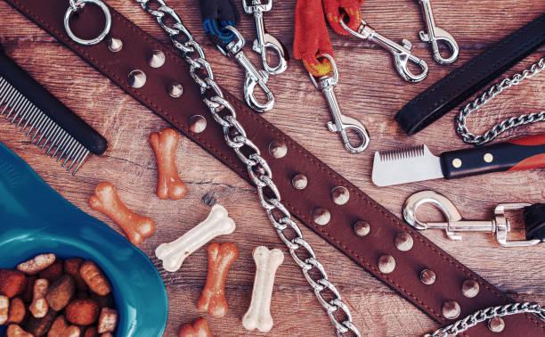 Accessoires pour animaux sur fond en bois. Vue de dessus. Animaux et animaux de concept - Photo