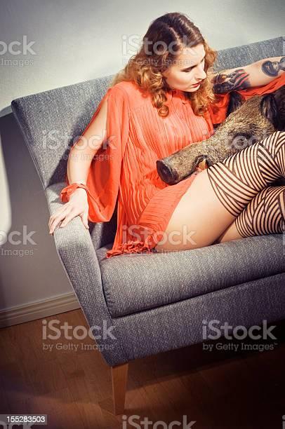 Pet Boar Und Attraktive Lady Stockfoto und mehr Bilder von Wildschwein