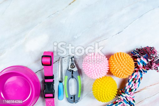 istock Pet bowl, leashes, and toy for dog.  Pet accessories concept. 1166584094