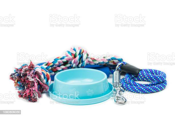 Pet bowls rope and leash with hook on isolated white pet supplies picture id1060806030?b=1&k=6&m=1060806030&s=612x612&h=0rvootxdyylhvnm2ypv7grgmflh0r5ib2xzi1h5pouo=