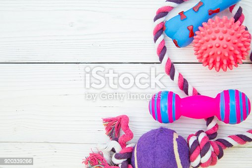 istock Pet care background 920339266