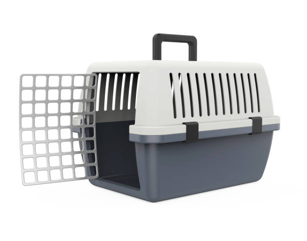 transportbox, isoliert - hunde träger stock-fotos und bilder