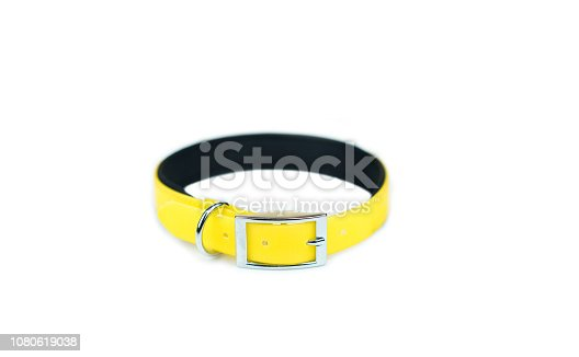 Pet collars isolated on white background.  Pet accessories concept