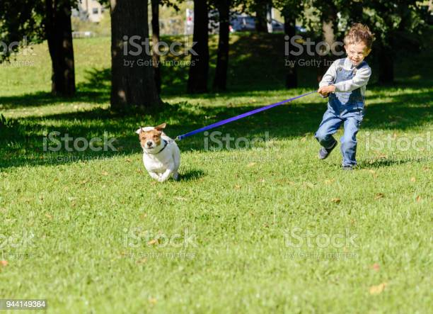 Pet dog drags little kid boy on strained leash picture id944149364?b=1&k=6&m=944149364&s=612x612&h=mnsew5xmx 9qppronywysr xfvnnrmqjms6j9 8qzxa=