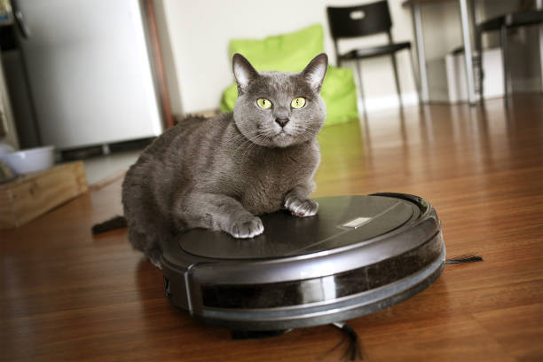 Pet friendly smart vacuum cleaner stock photo