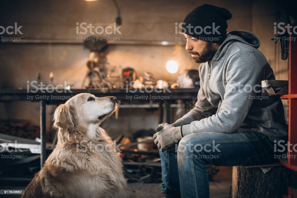Pet dog at owner\'s workplace