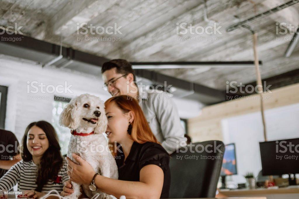 Pet friendly workspace