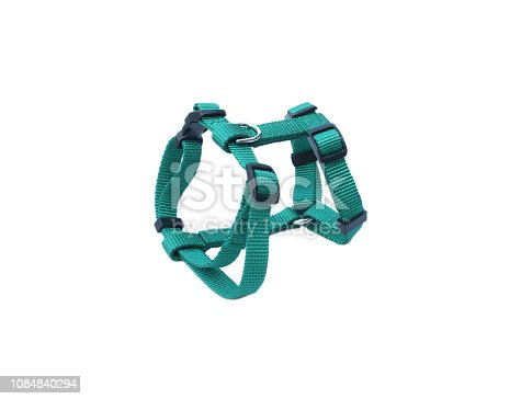 istock Pet harness isolated on white background.  Pet accessories concept 1084840294