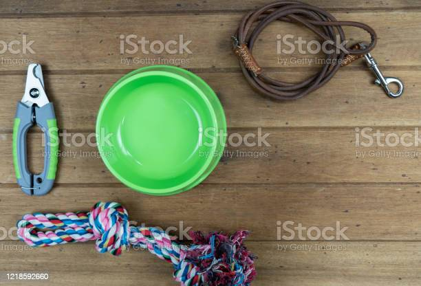 Pet leashes with accessories on wooden background picture id1218592660?b=1&k=6&m=1218592660&s=612x612&h=g esirvmaqiwzfnme7uiappccryq278uinwmdqvsebi=