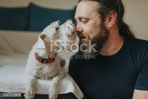 Pet owner is taking care and playing with his dog at home. They are touching faces.