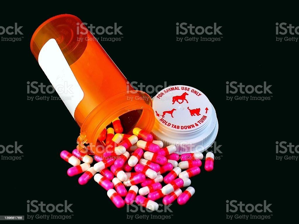 Pet Pills royalty-free stock photo