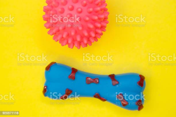 Pet rubber toys picture id920371116?b=1&k=6&m=920371116&s=612x612&h=2mtmpm0lxuiawemkdcowpipkxt28bs1chh tdtqiw0y=
