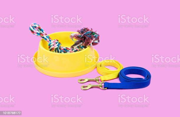Pet supplies concept bowl with leash and rope on pink background picture id1018768172?b=1&k=6&m=1018768172&s=612x612&h=mtgnywngxhagvycoeqsi ncccqavzhipopr8hnlbutq=