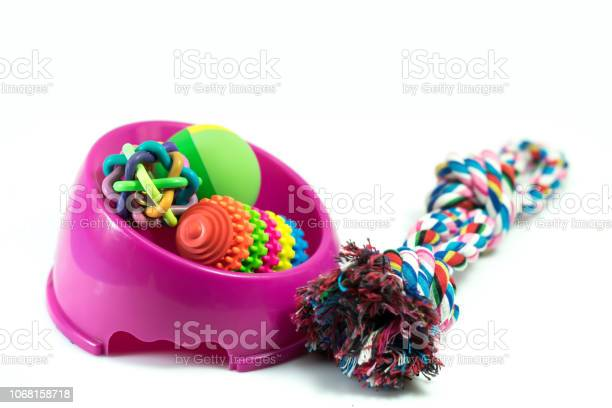 Pet supplies set about bowl rope rubber toys for dog or cat on white picture id1068158718?b=1&k=6&m=1068158718&s=612x612&h=uzfc18yqz08rzttwmzzbmzeidefl4viagfl3ifcmtum=