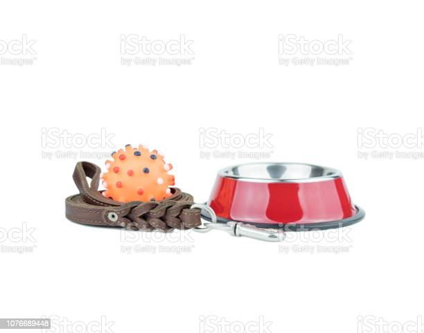 Pet supplies set about stainless bowl rubber toys and leather of for picture id1076689448?b=1&k=6&m=1076689448&s=612x612&h=jywwpnytxkwjxfyqvxlom4zuwcqgxqj3bcuxe70ykxo=