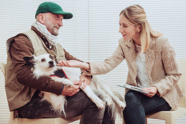 Pet therapy dog visiting senior man with psychologist. Alternative therapy concept. stock photo