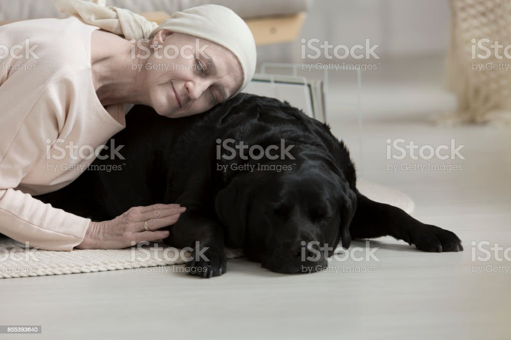 Pet therapy helping woman stock photo