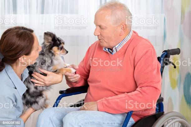 Pet therapy senior man with little dog picture id646058160?b=1&k=6&m=646058160&s=612x612&h=hnbqmzu8aj94soizwqmoayesg30 mneiaei4wjz6lju=
