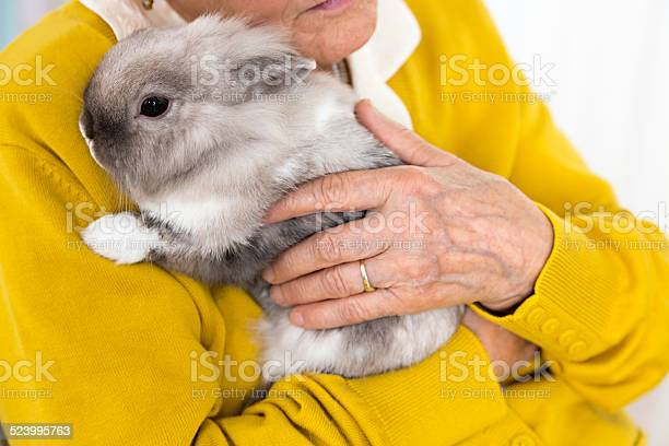 Pet therapy senior woman with rabbit picture id523995763?b=1&k=6&m=523995763&s=612x612&h=jwydevztozeaycwf7lmtb1ukfchcp8cbh32bxtaii4s=