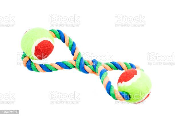 Pet toys on isolated white background picture id954252102?b=1&k=6&m=954252102&s=612x612&h=7wlfvleq5wfku3f2z098u ixajpau8cmsxg9bj9gngm=