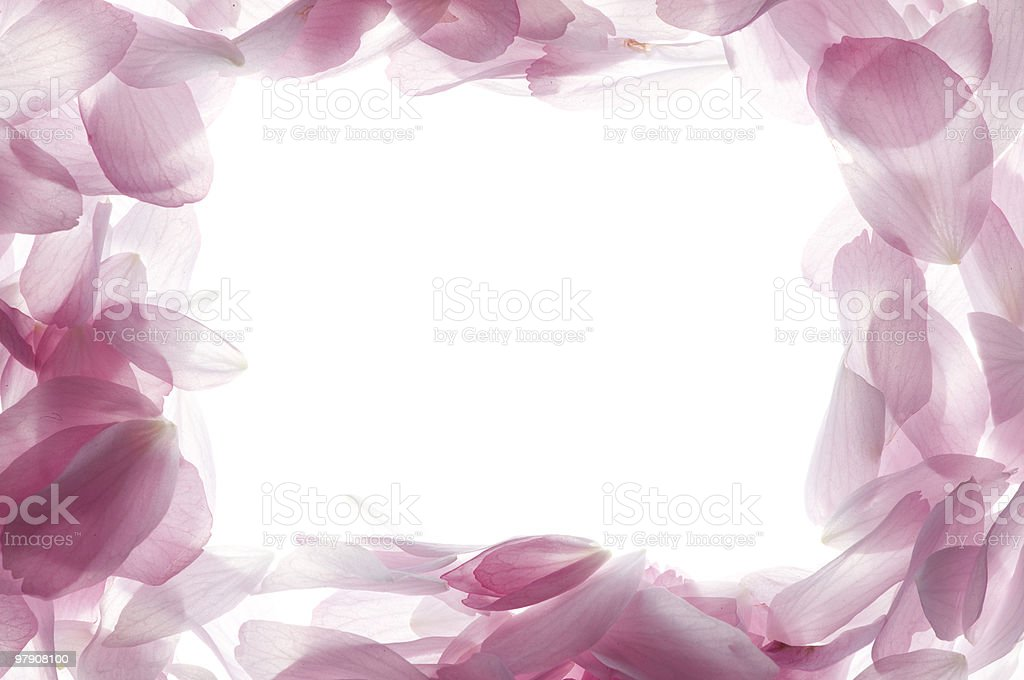 Petal frame royalty-free stock photo