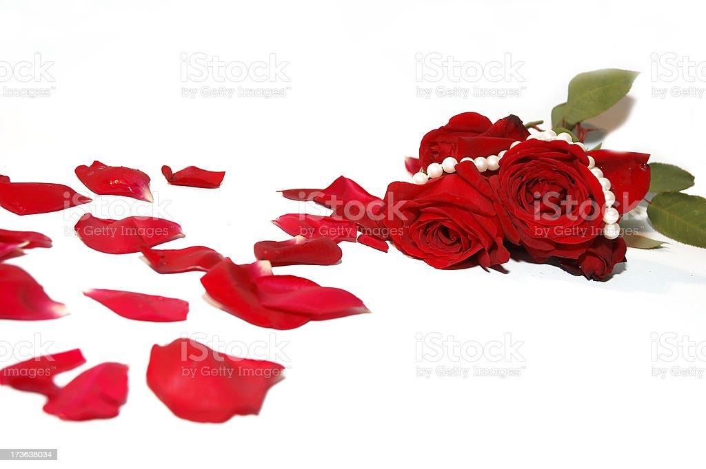 Petals and Pearls royalty-free stock photo