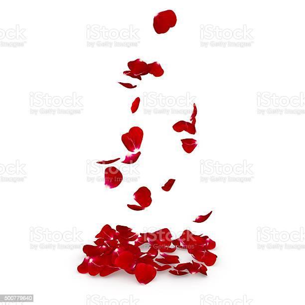 Petals dark red rose flying on the floor picture id500779640?b=1&k=6&m=500779640&s=612x612&h=nmuy7qro1idjewl dogqd6w4lv7ztg jwcripwl3ubk=
