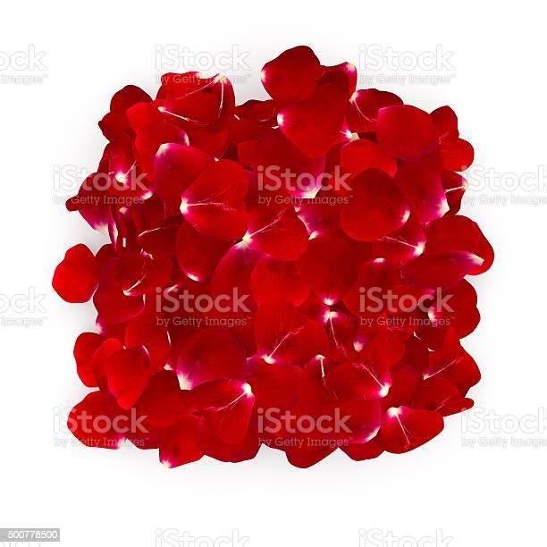 Petals dark red rose lying on the floor picture id500778500?b=1&k=6&m=500778500&s=612x612&h=mlf6ekoyiqhvodemokvalwkkqv sysqftxozn5dvqze=