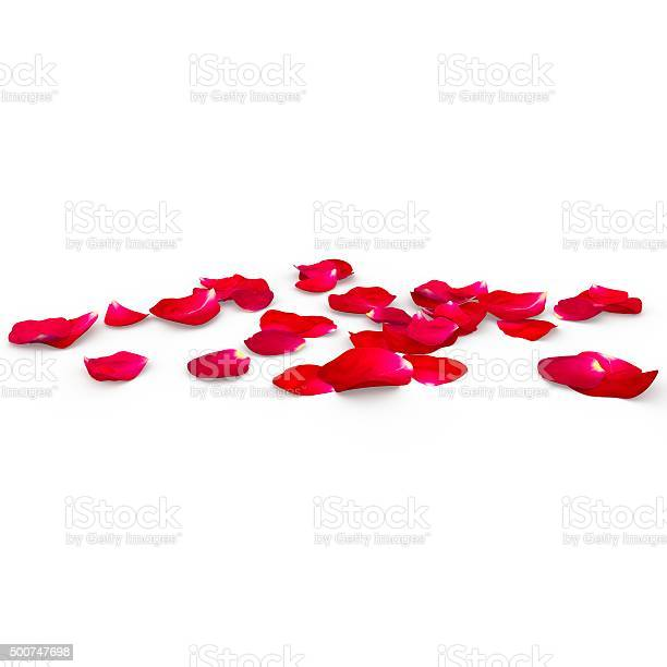 Petals of a red rose lying on the floor picture id500747698?b=1&k=6&m=500747698&s=612x612&h=fssiu9safylv 0drojlbbn4bdgmrlzpac1ycizhskmm=