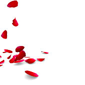 istock Petals of roses fall on a floor 485488109