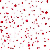 istock Petals of roses on the isolated background 485488121