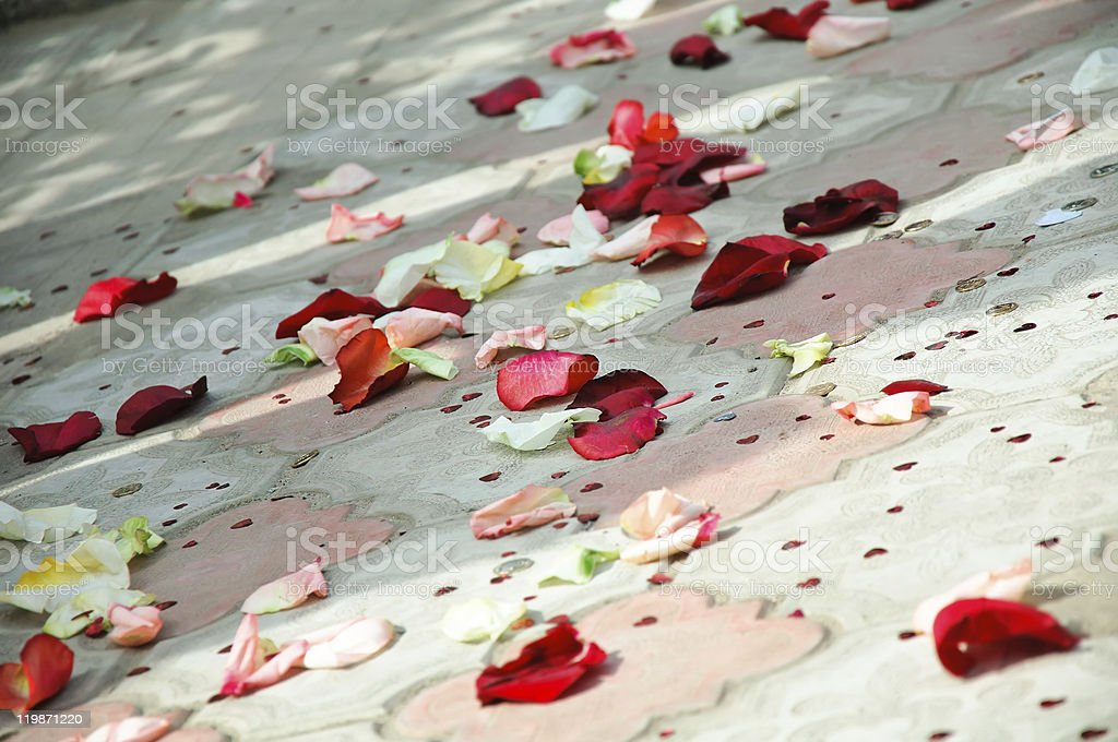 Petals of roses scattered on a floor stock photo