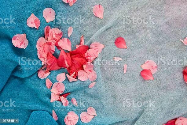 Petals on cloth picture id91784514?b=1&k=6&m=91784514&s=612x612&h=e cdrs2qikdyhs0d bmmpwwoz3rt0ztwzdhr2qa799s=