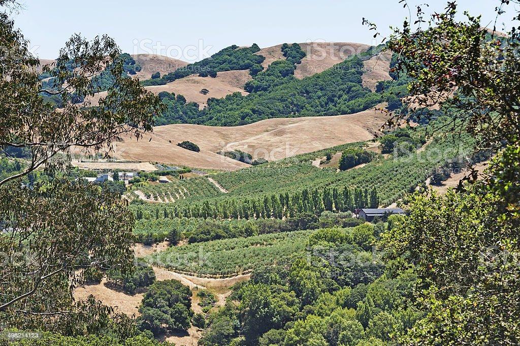 Petaluma Valley Views stock photo