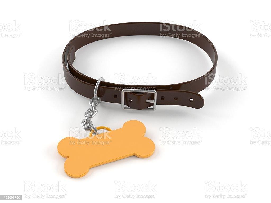 Pet-collar stock photo
