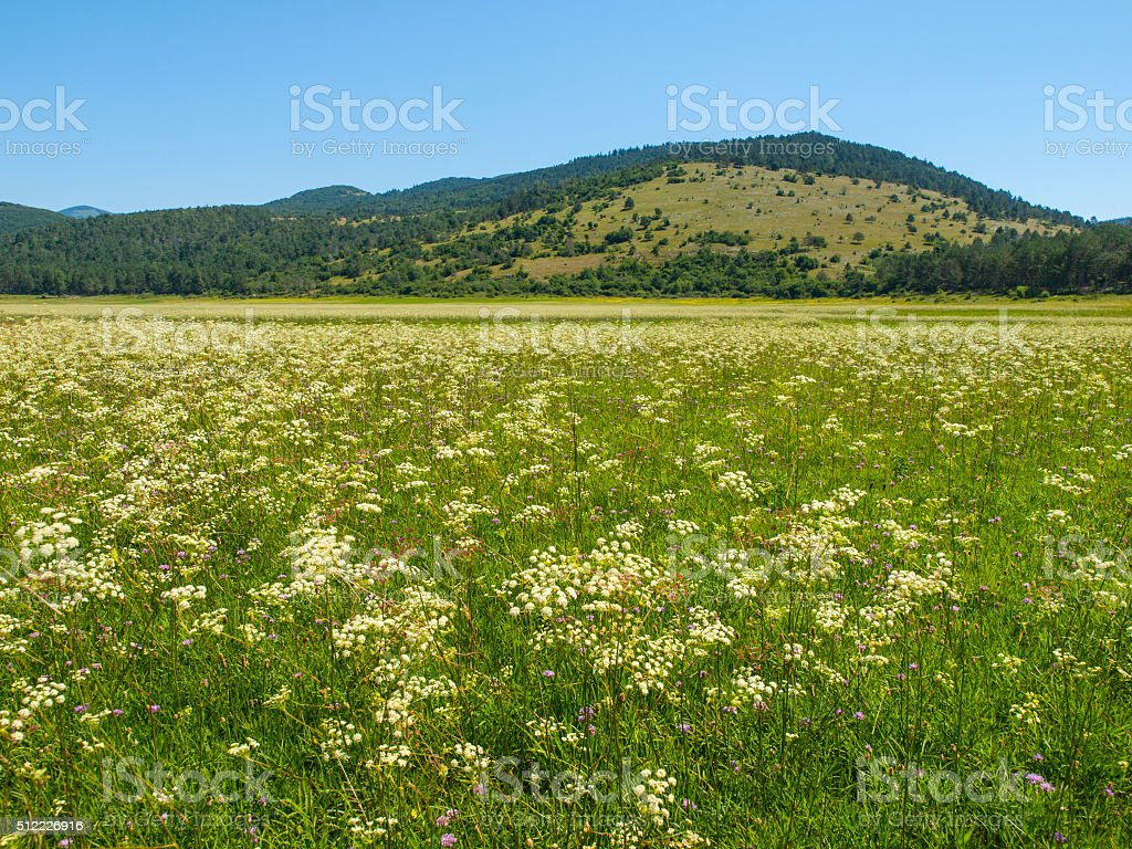 Petelinje intermittent lake in dry summer season stock photo