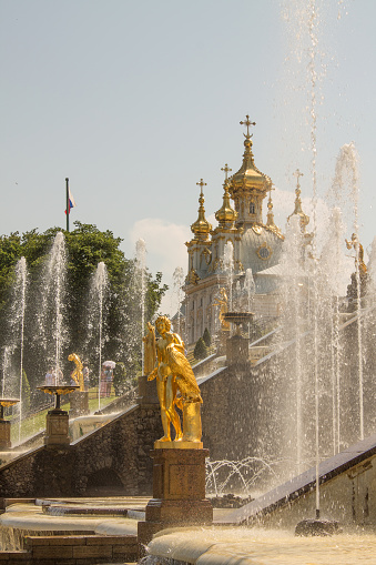 Peterhof statue in a landscaped park with golden statues and cascading fountains on a clear summer sunny day in Saint-Petersburg