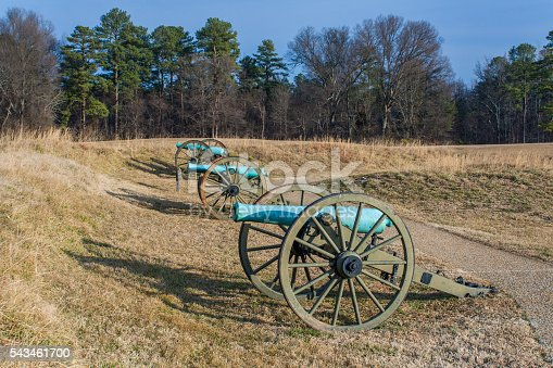 A a line of battle cannons on the grounds of Petersburg National Battlefield in Virginia n the winter of 2009.