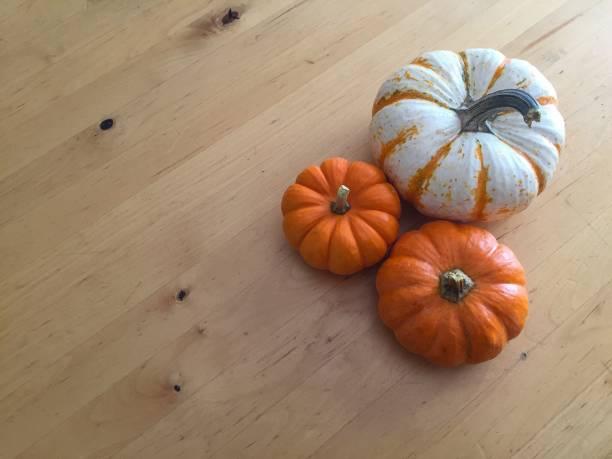 Petit Pumpkins stock photo