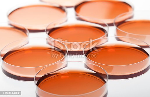 1097010784istockphoto Petri dishes and pipette with liquid material. 1190144033