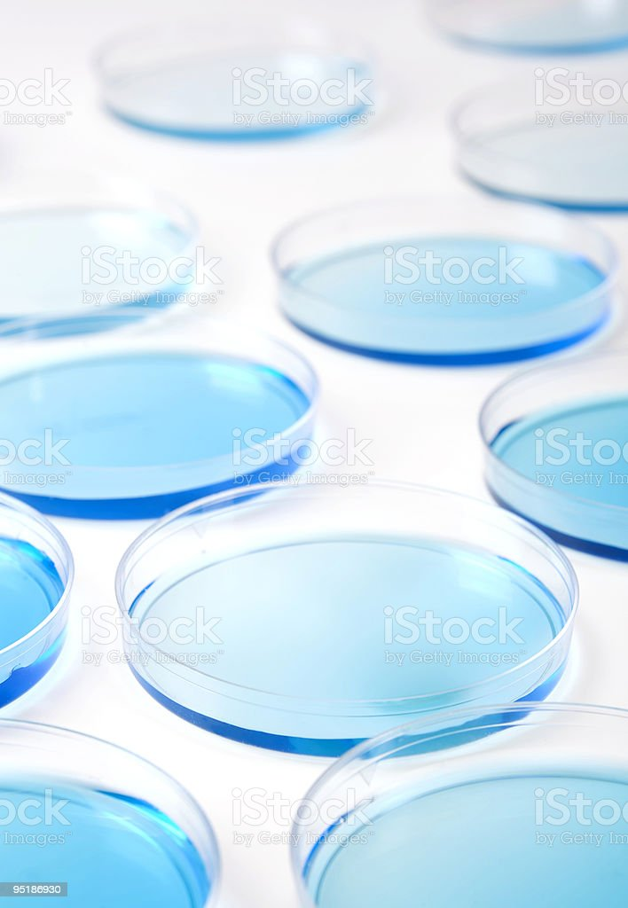 petri dishes background 1642 royalty-free stock photo