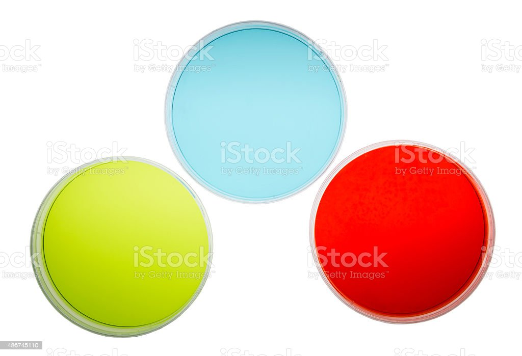 Petri Dishes with Colorful Agar stock photo