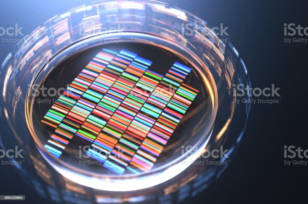 Placas de Petri con las muestras para la secuenciación del ADN, render 3d. foto de stock libre de derechos