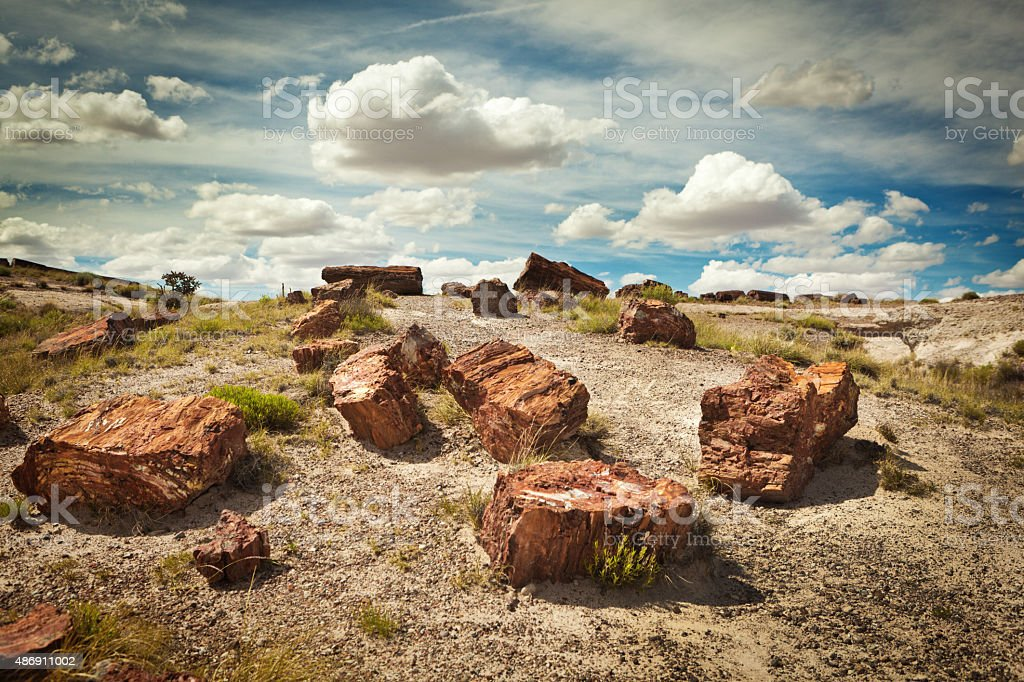 Petrified Forest National Park of Arizona, Southwest USA stock photo